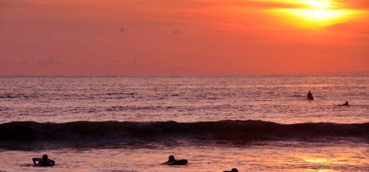 Bali Adası, Sipadan, Deniz Çingeneleri  ve Borneo Yağmur Ormanları