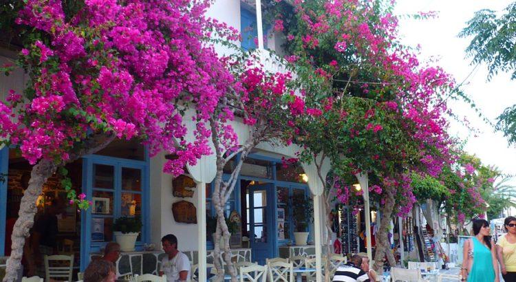 Antiparos-traditional-cafes