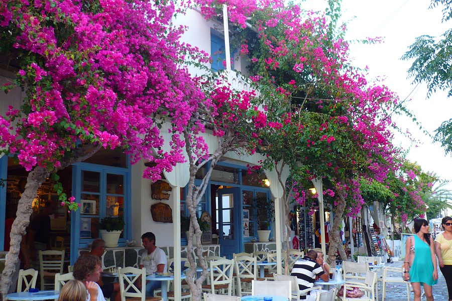 Antiparos-traditional-cafes