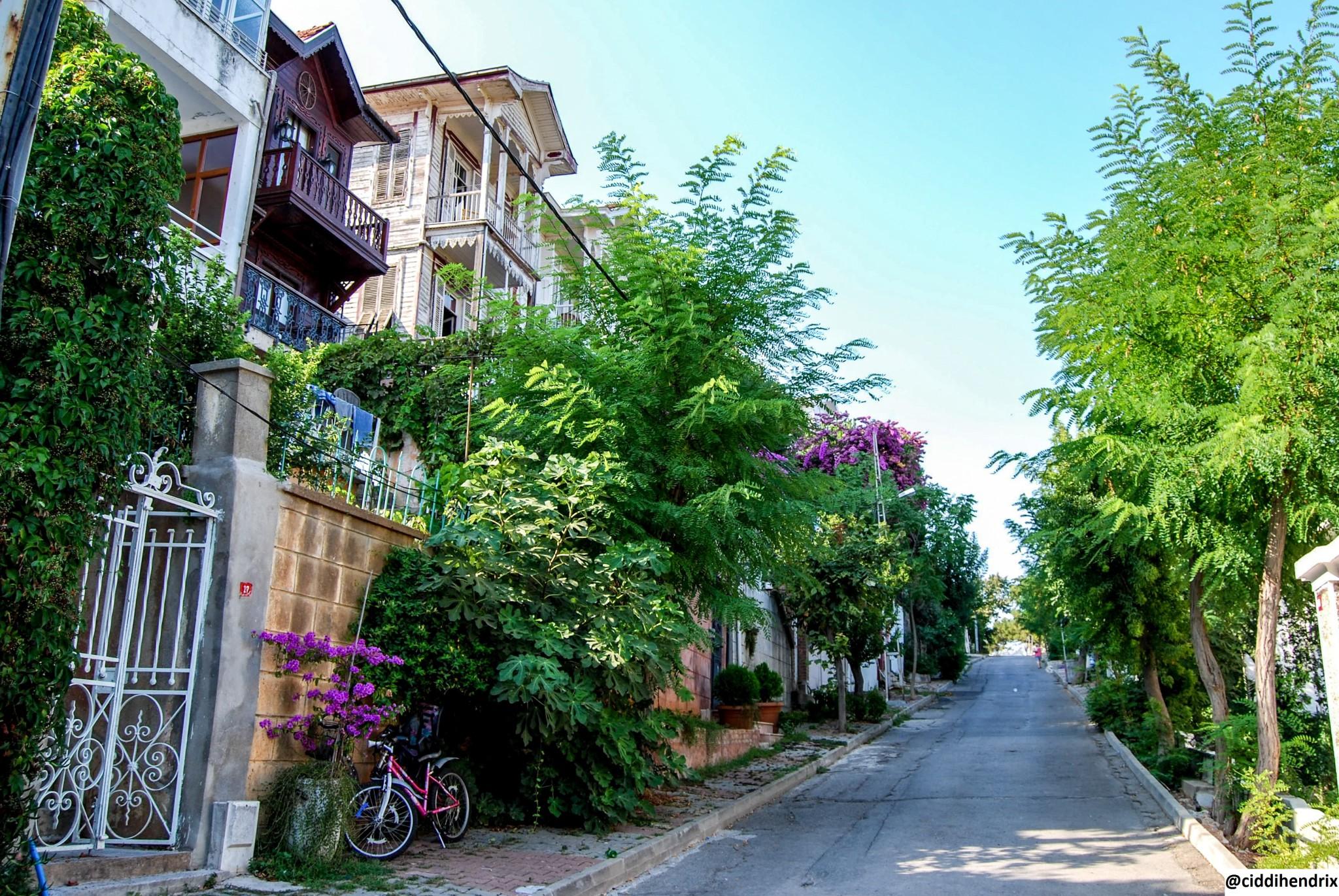 Burgazada Ada Sokakları