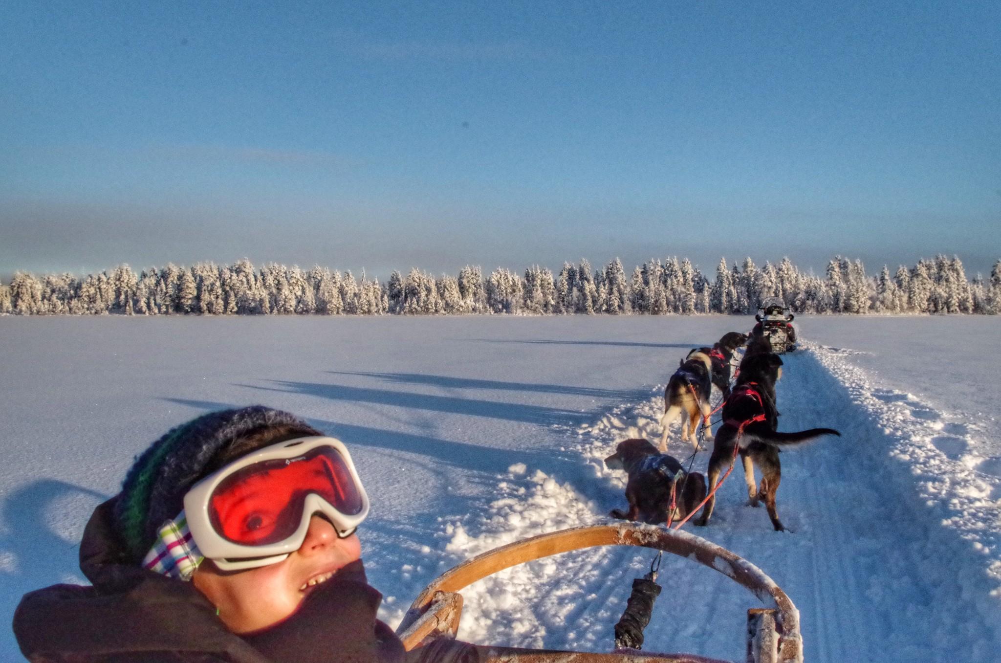 Donmuş Göl üstünde Husky Safari